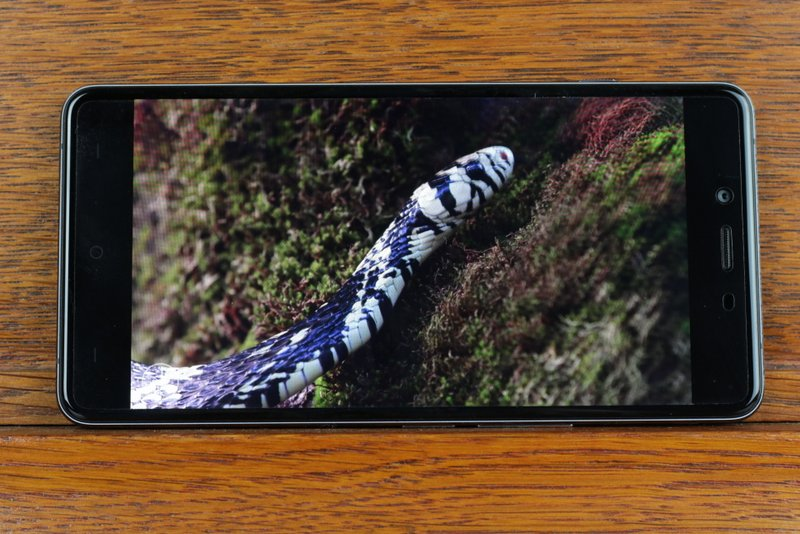 OnePlus-X-4gnews-62.jpg