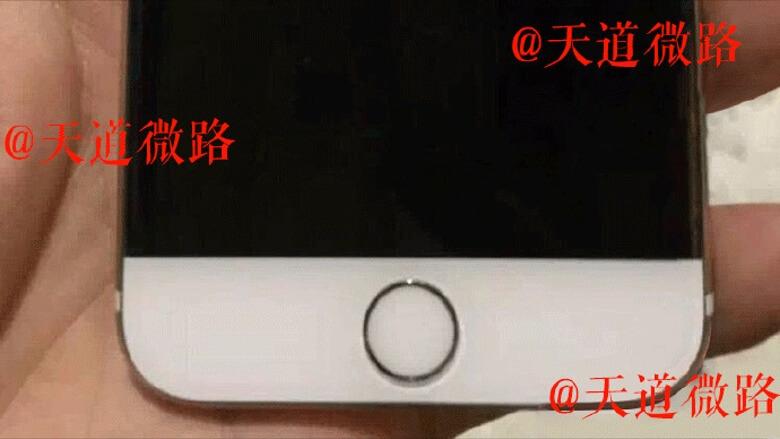 iphone-7-bezelless