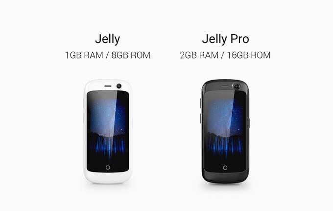 Jelly-9.jpg