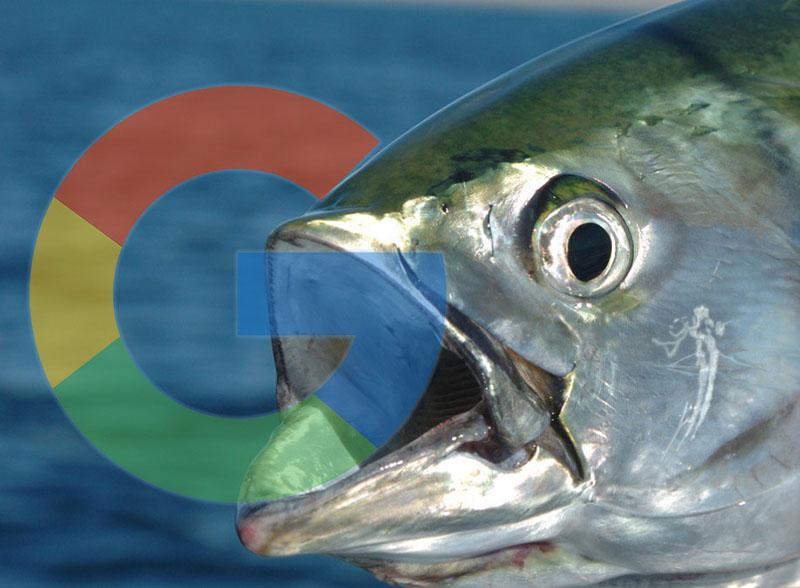 Google Pixel 3 Albacore Super Pixel