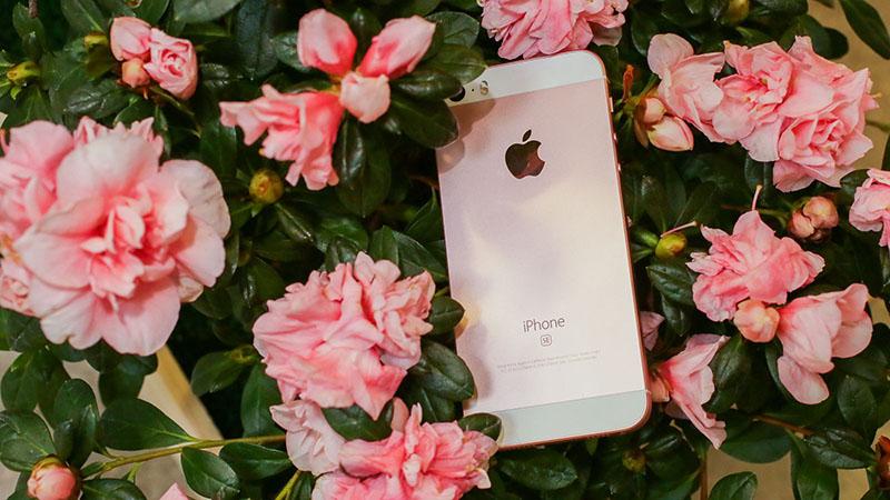 Apple iPhone SE 2 Apple iPhone 7