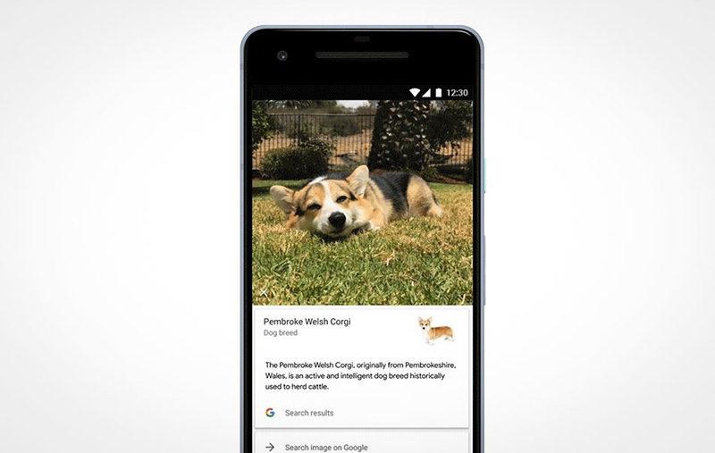 Google Fotos Google Lens