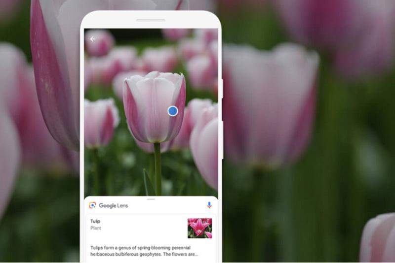 Google Lens iOS Apple Android